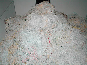 CDM Shredded papers and documents